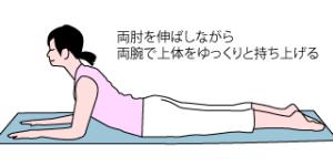 マッケンジー2